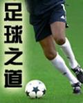 《足球之道》(校对版全本TXT下载)作者:不如踢球